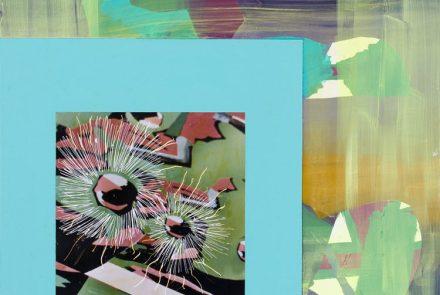 Caligrafía Vegetal (2009)
